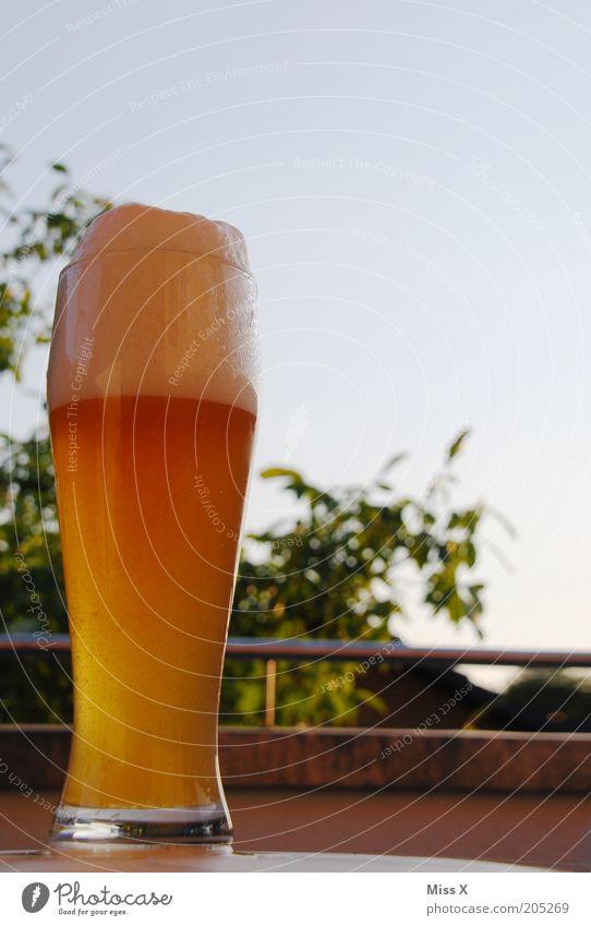 Feierabendbierchen für Crocodile ruhig kalt Erholung Zufriedenheit Lebensmittel frisch Getränk trinken Bier Restaurant lecker Alkohol Schönes Wetter ausgehen
