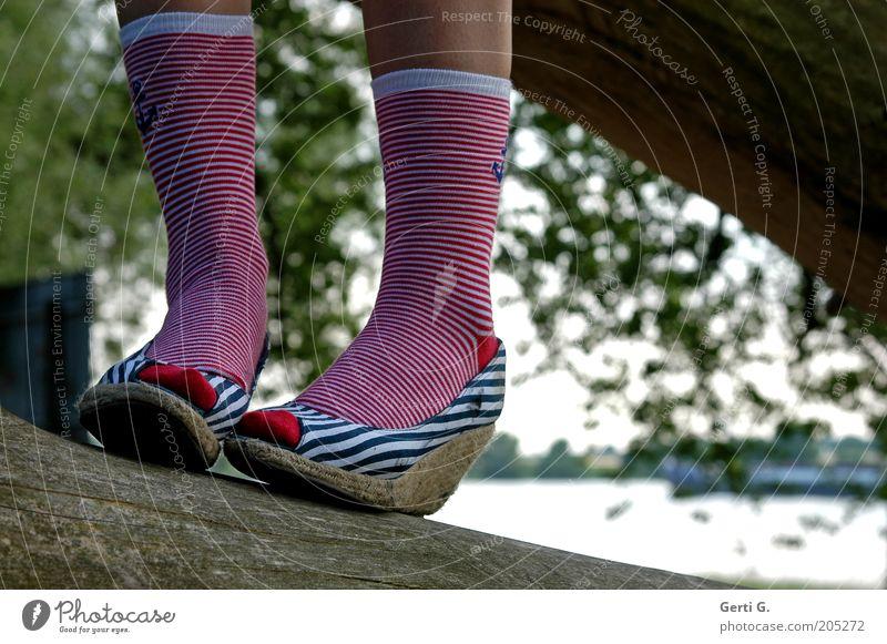 geRINGel Ringelsocken Schuhe Fuß Beine gestreift Streifen marinelook keilabsatz Strümpfe rot weiß blau Baumstamm Gleichgewicht schick Schwache Tiefenschärfe