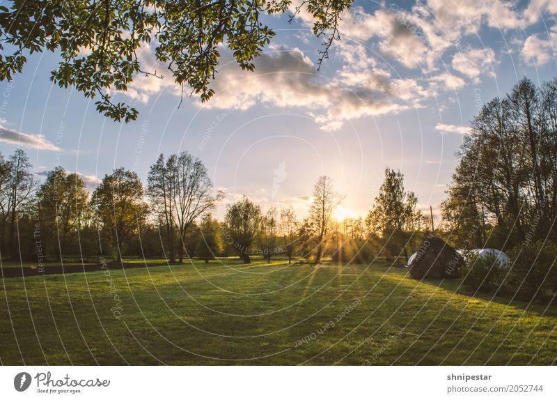 Sonnenuntergang im Spreewald Wellness Leben harmonisch Wohlgefühl Zufriedenheit Sinnesorgane Erholung ruhig Meditation Duft Kur Ferien & Urlaub & Reisen Camping