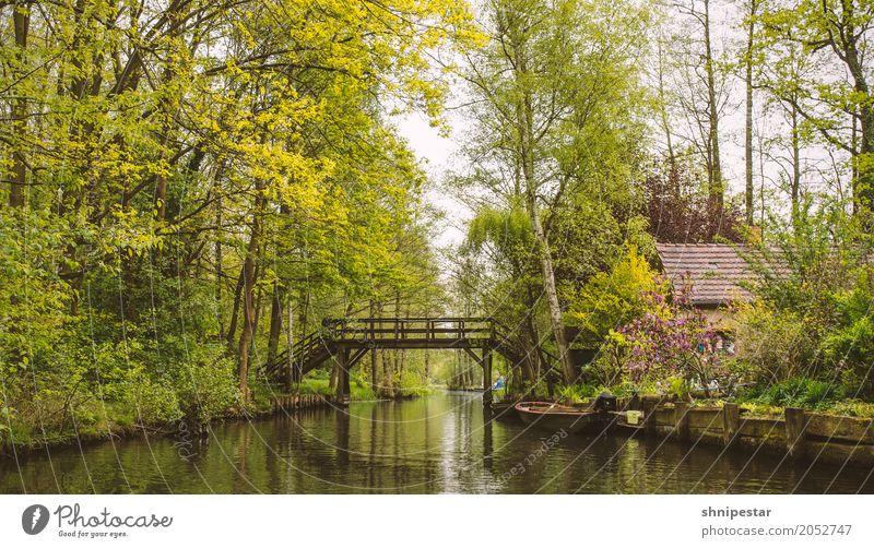Kahnfahrt im Spreewald Natur Ferien & Urlaub & Reisen Sommer Pflanze Wasser Landschaft Baum Ferne Architektur Umwelt Wege & Pfade Tourismus Deutschland Ausflug