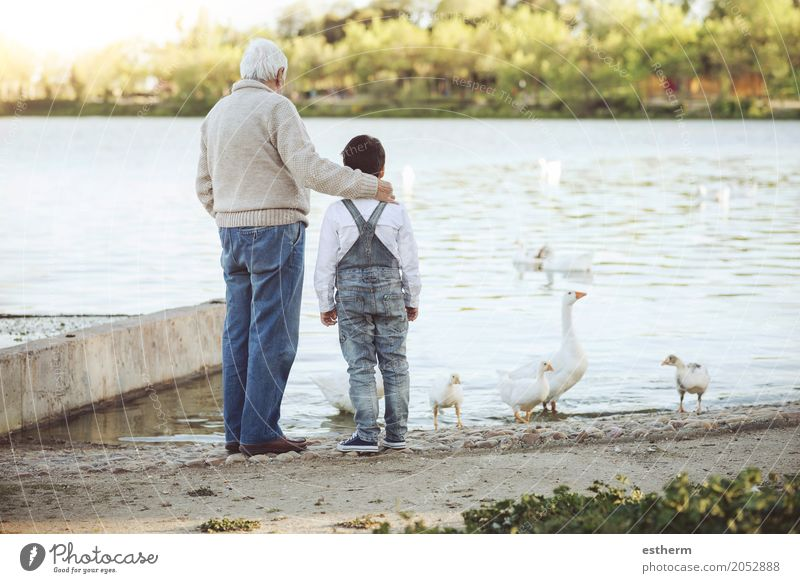 Großvater mit seinem Enkel auf dem See. Rückansicht Lifestyle Freizeit & Hobby Mensch maskulin Kind Kleinkind Junge Männlicher Senior Mann Großeltern