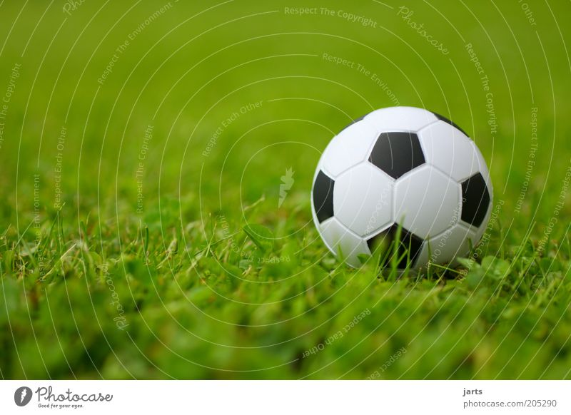 fußball Sport Fußball Ball Freizeit & Hobby Sportrasen Fußballplatz Sportplatz Froschperspektive Ballsport