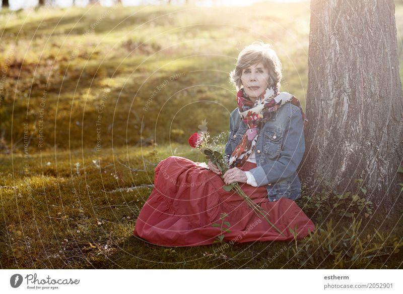 Glückliche ältere Frau, die auf dem Gras sitzt Mensch schön Freude Leben Lifestyle Liebe Senior feminin Garten Park elegant Idylle sitzen 60 und älter