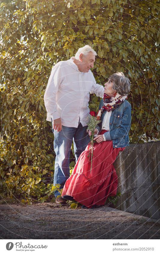 Portrait der romantischen älteren Paare Mensch Freude Lifestyle Liebe Senior Gefühle Familie & Verwandtschaft Glück Garten Feste & Feiern Zusammensein