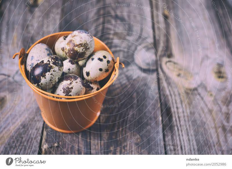 Frische Wachteleier Essen Frühstück Diät Geschirr Tisch Ostern Holz frisch hell klein natürlich oben grau Tradition Eimer Öko organisch Bauernhof geschmackvoll