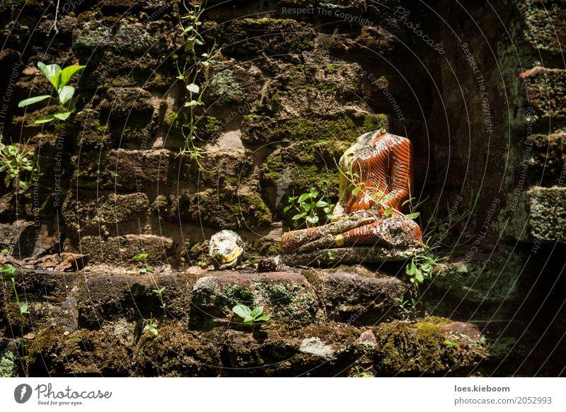Beheaded Buddha Ferien & Urlaub & Reisen Frieden Religion & Glaube Sri Lanka Asien Island Buddhism Anuradhapura Nakha Vihara hidden temple jungle bricks leaves