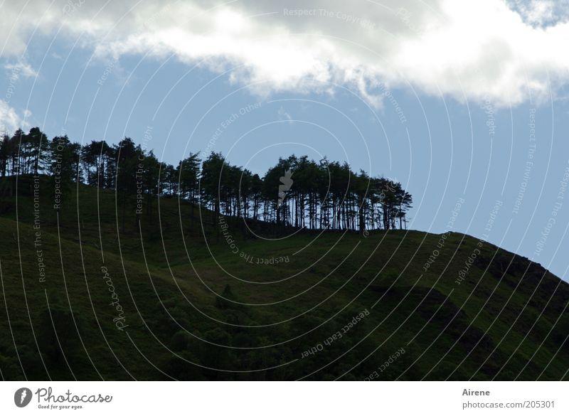 Bürstenschnitt am Berg Berge u. Gebirge Landschaft Himmel Wolken Baum Wald Hügel dunkel blau schwarz weiß standhaft Baumreihe Bergwald Waldrand Außenaufnahme