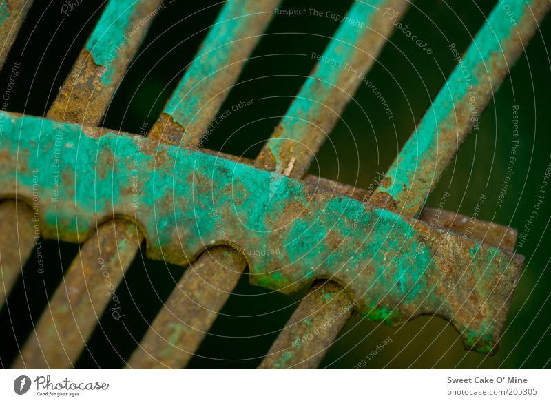 Garten im Detail alt grün Metall braun kaputt Perspektive Rost Reihe Makroaufnahme aufgereiht Detailaufnahme unbrauchbar Metallstange Zahn der Zeit