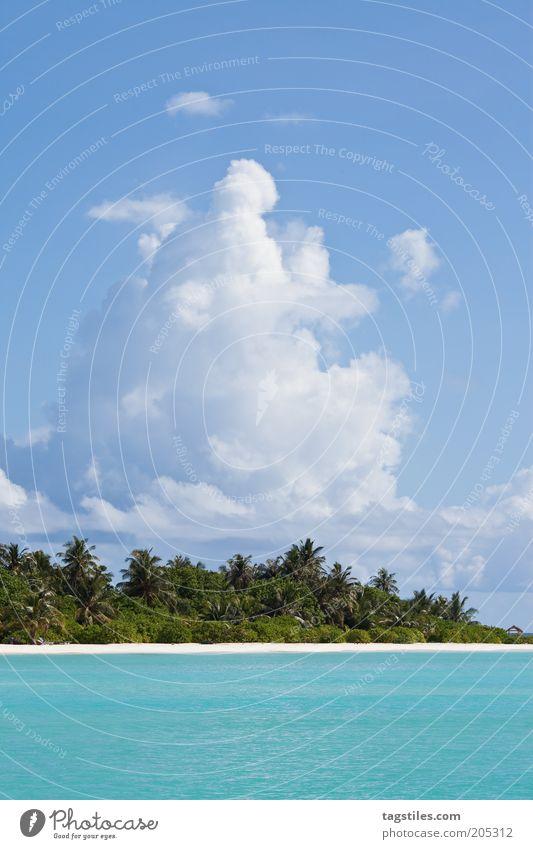 * TRÄUM * Erholung ruhig Ferien & Urlaub & Reisen Tourismus Strand Meer Insel Sand Wolken träumen blau Einsamkeit Idylle Malediven abgelegen Palme türkis