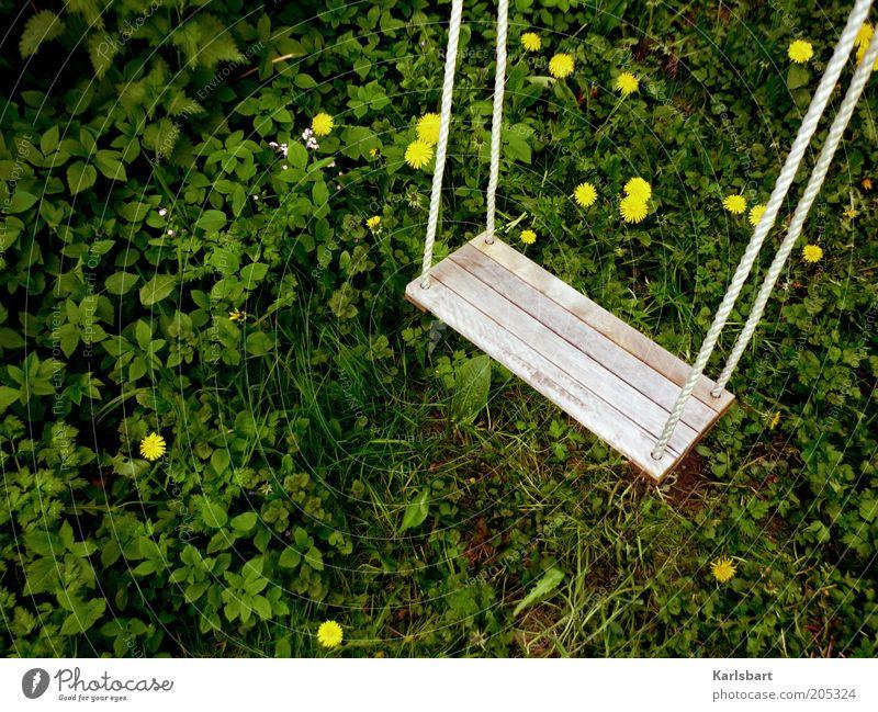 ich baumel' zwischen löwenzähnchen. Natur Pflanze Sommer ruhig Blüte Gras natürlich Löwenzahn Schaukel Spielplatz stagnierend mehrfarbig Spielzeug