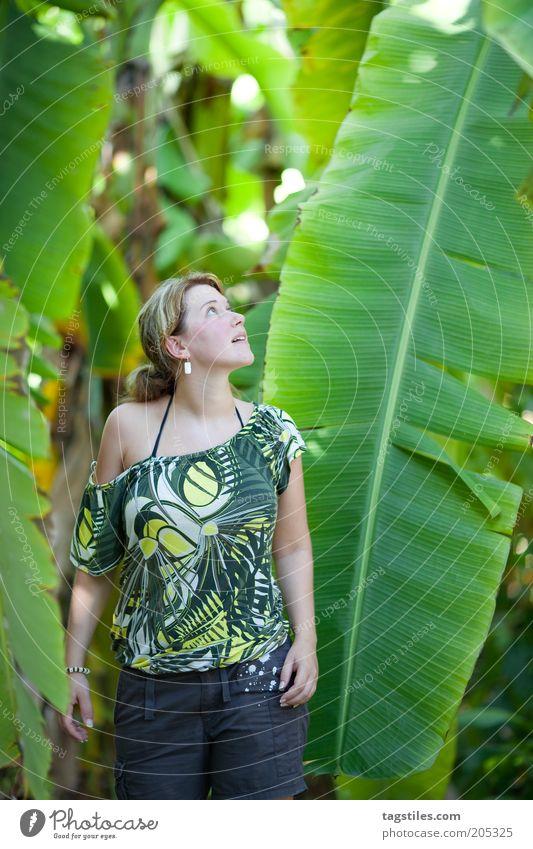 SIZE MATTERS AGAIN Größe groß Banane Stauden Bananenstaude Blatt Frau staunen vergleichen Größenvergleich Blick Farbfoto grün Malediven Pflanze ursprünglich