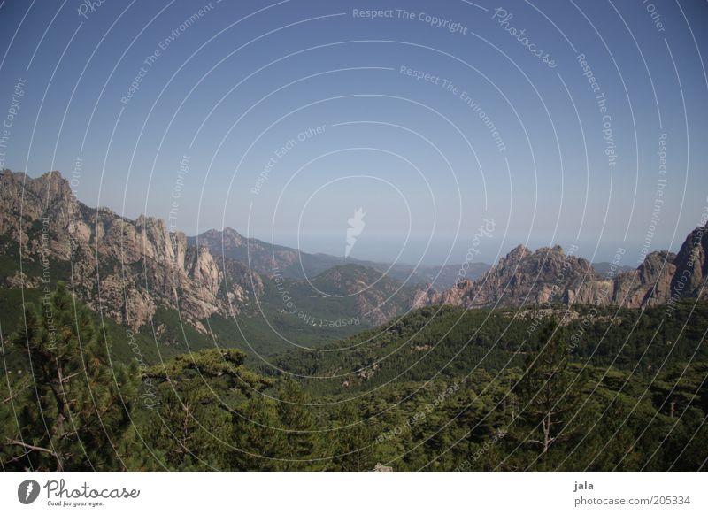bis zum meer Ferien & Urlaub & Reisen Sommer Sommerurlaub Insel Berge u. Gebirge Landschaft Himmel Wolkenloser Himmel Wald Meer Korsika Frankreich blau grün