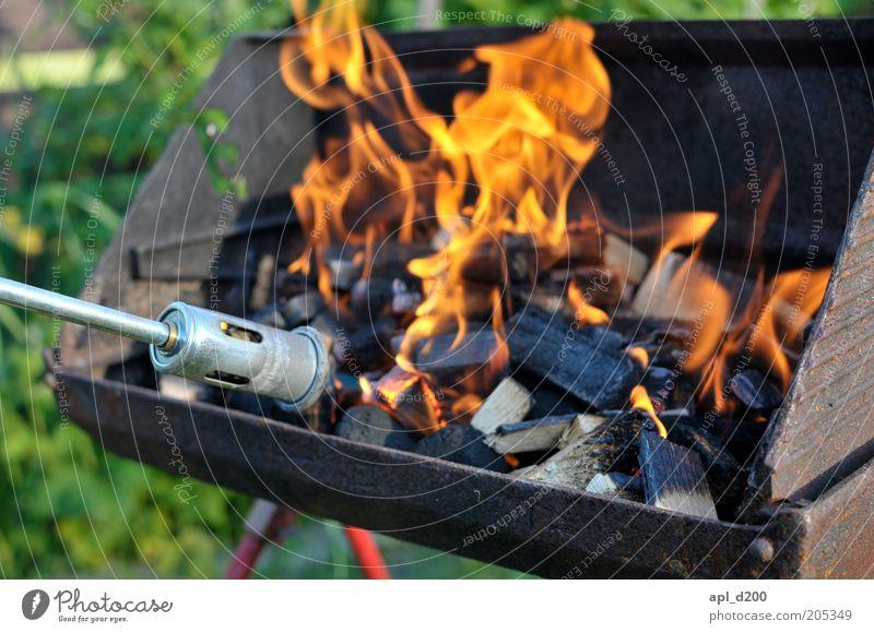 burn m********** burn Freizeit & Hobby Grill Grillen Grillkohle Umwelt Natur Feuer authentisch Kohle Grillanzünder Bunsenbrenner Farbfoto mehrfarbig