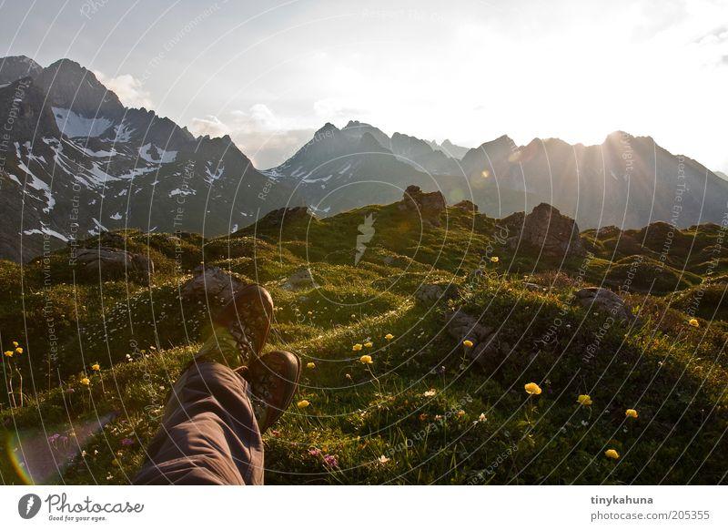 abends halb zehn im Lechtal Abenteuer Ferne Freiheit Sommer Berge u. Gebirge wandern Beine Fuß 1 Mensch Natur Landschaft Pflanze Schönes Wetter Blume Gras Wiese