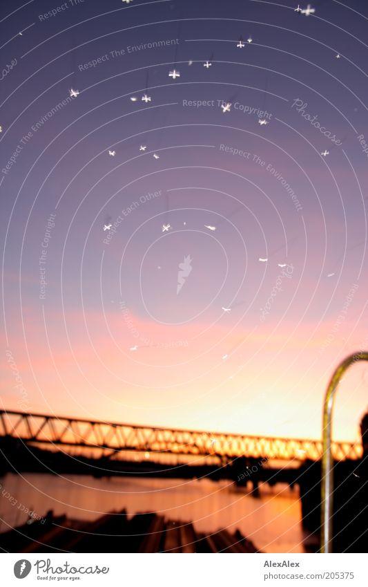 Kleine Stecher Tier Bewegung fliegen Brücke Fluss Abenddämmerung Schwarm Elbe Stechmücke Plage Natur Mückenplage