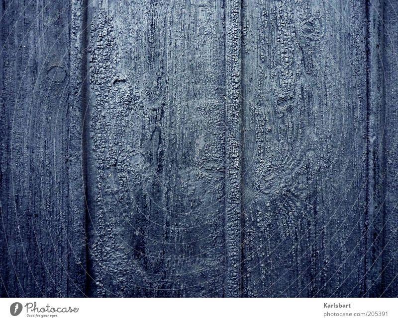 grauhaut. Bauwerk Fassade Holz dunkel ästhetisch geheimnisvoll stagnierend Ölfarbe Teer Maserung Holzwand anthrazit Farbfoto Außenaufnahme Nahaufnahme