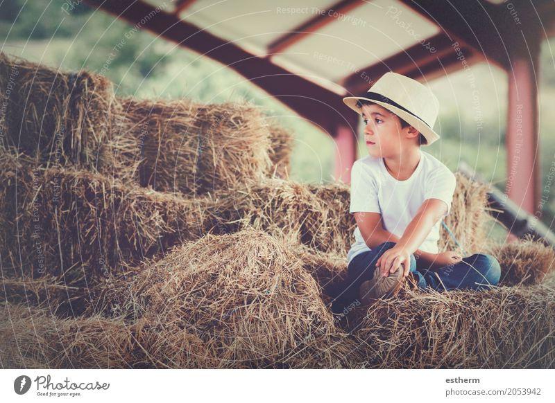 Nachdenklicher Junge Ferien & Urlaub & Reisen Freiheit Mensch feminin Kind Kleinkind Kindheit 1 3-8 Jahre Natur Frühling Wiese Feld träumen Traurigkeit Gefühle