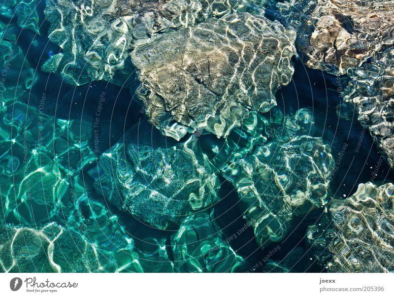 Lichtspiele Natur Wasser Meer Flüssigkeit Inspiration Umwelt Meerwasser Lava Farbfoto Außenaufnahme Muster Strukturen & Formen Tag Stein Wasserspiegelung