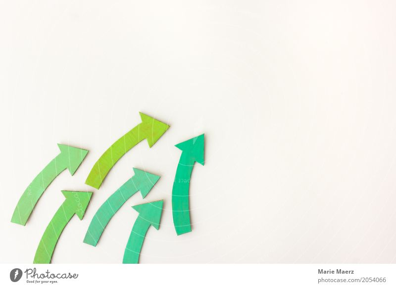 Auf! Auf! grün Wege & Pfade Bewegung Design frei Erfolg authentisch Pfeil Mut Inspiration nachhaltig Teamwork positiv führen Optimismus innovativ