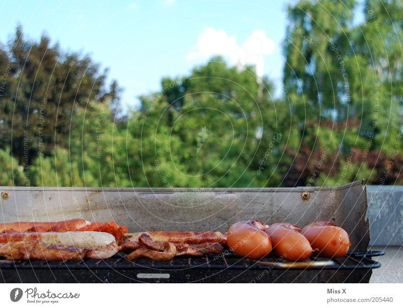 Grill im Grünen Ernährung Garten Park Lebensmittel heiß lecker Grillen Camping Fleisch Picknick Abendessen Wurstwaren Bratwurst Steak