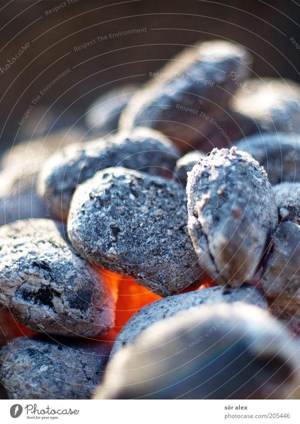 Sommerhitze grau Wärme orange Feuer heiß brennen glühen Kohle Glut Brennstoff Vorbereitung Grillkohle glühend Grillsaison