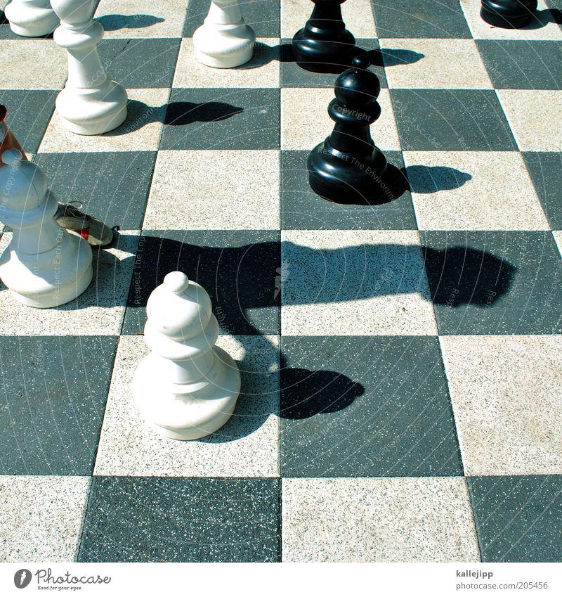 bauer Mensch weiß Sonne Ferien & Urlaub & Reisen Sommer schwarz Spielen Freizeit & Hobby planen Lifestyle Bildung Ziel führen Sommerurlaub Schach Schachbrett