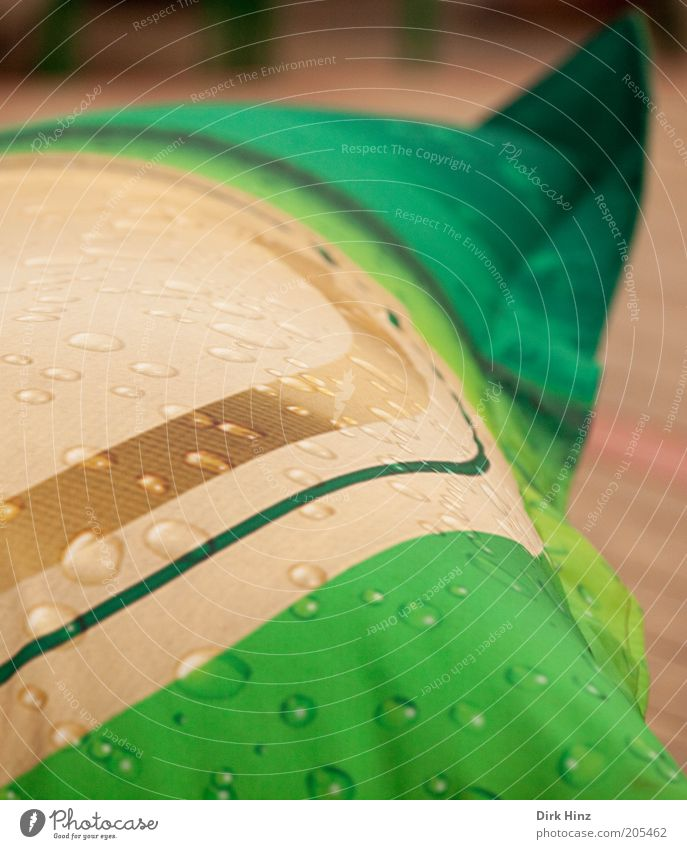 Virtuelles Feuchtgebiet Stadt grün Wasser Stil Feste & Feiern außergewöhnlich braun Lifestyle Freizeit & Hobby Design Dekoration & Verzierung Wassertropfen nass