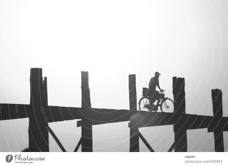 radfahrer Mensch Mann Sonne Sommer Ferien & Urlaub & Reisen hell Fahrrad Erwachsene maskulin Ausflug Brücke fahren Tourismus Freizeit & Hobby Asien