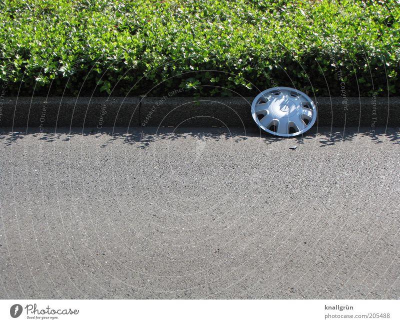 Holt mich ab! grün Pflanze Straße grau rund liegen unten Verkehrswege silber verloren Fahrzeugteile einzeln Bordsteinkante Fahrbahn Straßenrand Rinnstein