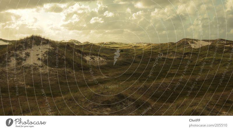 Es dünt so grün... Natur Ferien & Urlaub & Reisen ruhig Wolken Ferne Erholung Gras Sand Landschaft braun Insel Aussicht Hügel trocken Stranddüne Düne