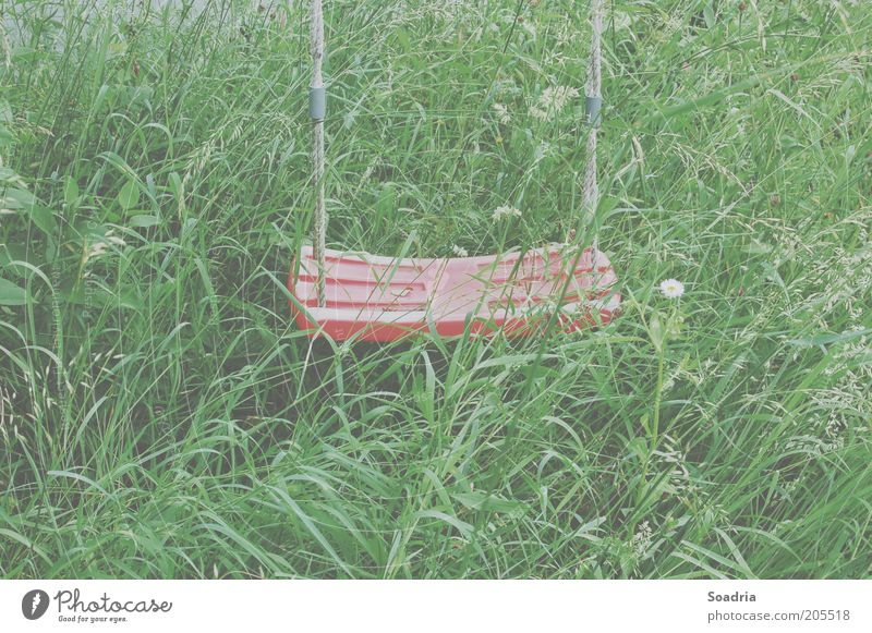 Aus dem Auge, aus dem Sinn. Natur Umwelt Wiese Gras Freizeit & Hobby leer Kunststoff Schaukel Spielzeug Pflanze