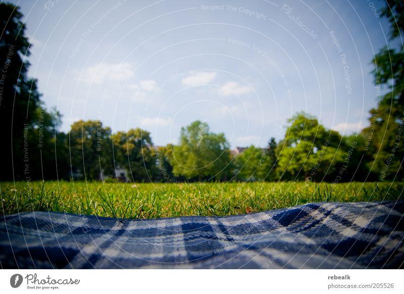 Picknick im Grünen Erholung ruhig Freizeit & Hobby Freiheit Sommerurlaub Garten Natur Himmel Park Wiese liegen grün Zufriedenheit Pause Decke Picknickdecke