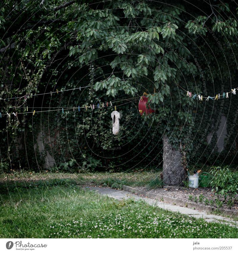 bei muttern Natur Pflanze Baum Gras Garten Wäscheleine Wäscheklammern Klammer dunkel trist grau grün Farbfoto Außenaufnahme Menschenleer Tag Rasen
