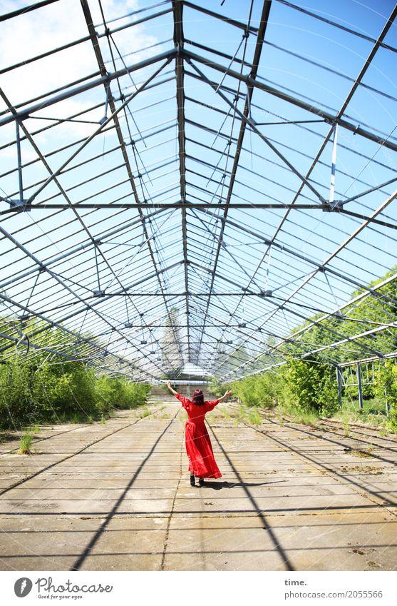 AST 10 | welcome to the sky feminin Frau Erwachsene Mensch Himmel Wolken Schönes Wetter Pflanze Ruine Gewächshaus genießen stehen Tanzen Freundlichkeit