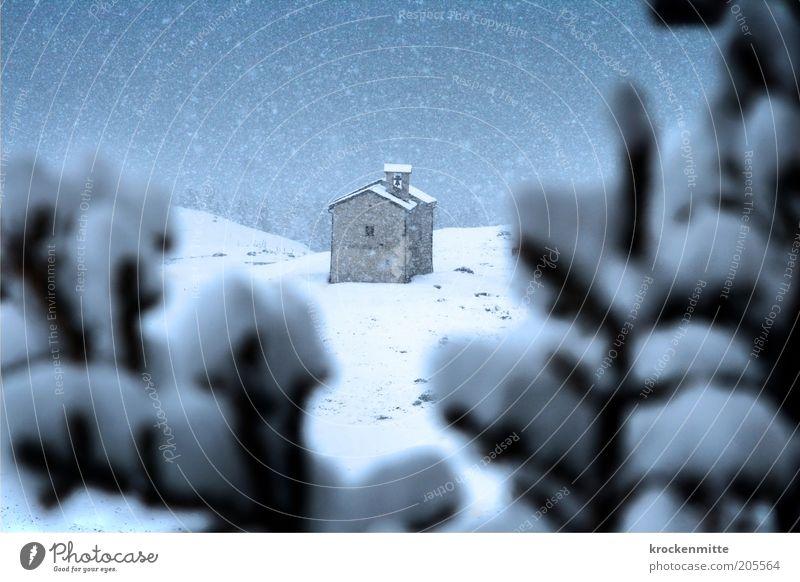 Die alte Kapelle Son Roc Himmel weiß blau Winter ruhig Einsamkeit Schnee Schneefall Gebäude Landschaft Religion & Glaube Kirche authentisch Schweiz Ast