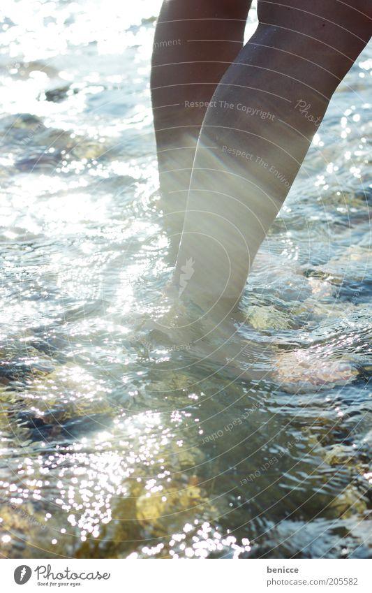 wasser Frau Mensch Jugendliche Wasser Sonne Sommer Ferien & Urlaub & Reisen Erholung See Beine Fluss Schwimmen & Baden Bach Barfuß kühlen