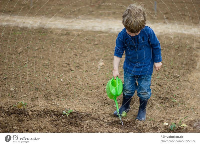 kind gießt mit einer gießkanne Mensch maskulin Kind Kleinkind Junge 1 1-3 Jahre Umwelt Natur Feld Jeanshose Gummistiefel Arbeit & Erwerbstätigkeit authentisch