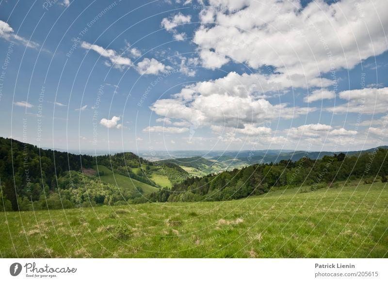 Wanderlust Natur schön Himmel Baum Sonne grün blau Pflanze Sommer Ferien & Urlaub & Reisen Wolken Ferne Wald Erholung Wiese Berge u. Gebirge
