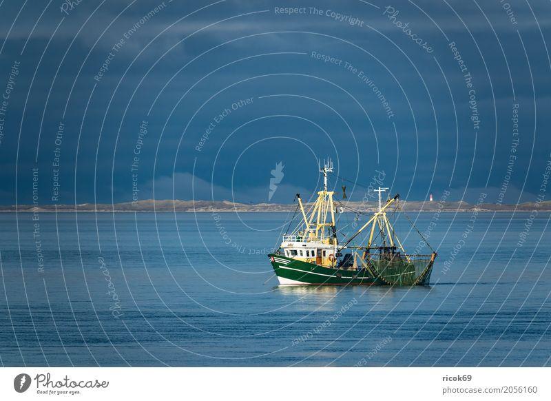Krabbenkutter auf der Nordsee vor der Insel Föhr Ferien & Urlaub & Reisen Tourismus Wasser Wolken Küste Fischerboot Wasserfahrzeug Netz Natur Tradition Umwelt