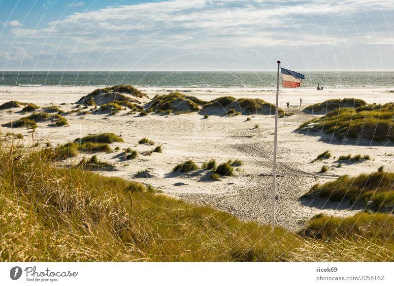Landschaft in den Dünen auf der Insel Amrum Erholung Ferien & Urlaub & Reisen Tourismus Strand Meer Natur Sand Wolken Herbst Küste Nordsee Fahne blau gelb