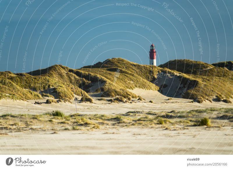 Landschaft in den Dünen auf der Insel Amrum Erholung Ferien & Urlaub & Reisen Tourismus Natur Wolken Herbst Küste Nordsee Leuchtturm Sehenswürdigkeit