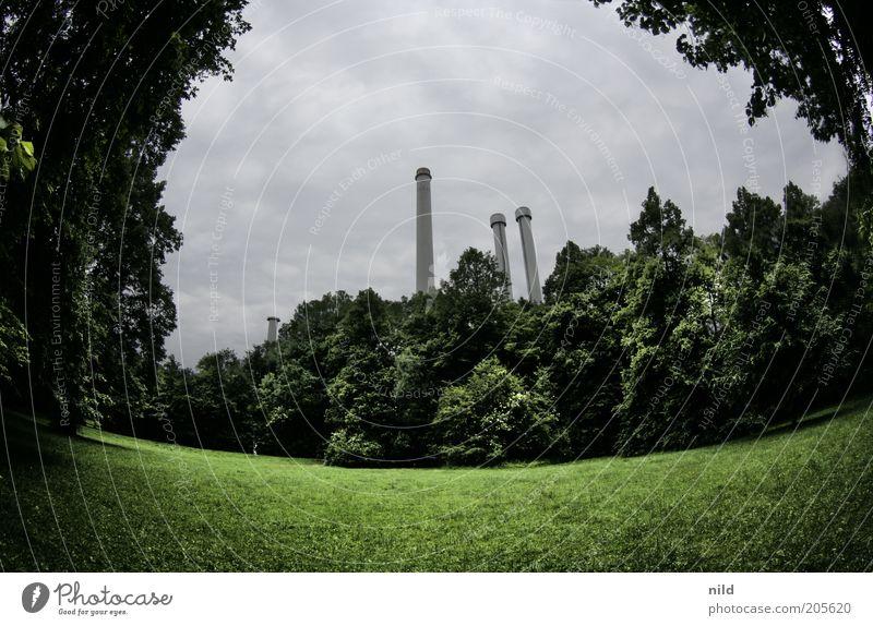 Isarstadt Umwelt Natur Landschaft Wolken Sommer schlechtes Wetter Pflanze Gras Park München Bauwerk Gebäude Schornstein Erholung grün Gegenteil Farbfoto