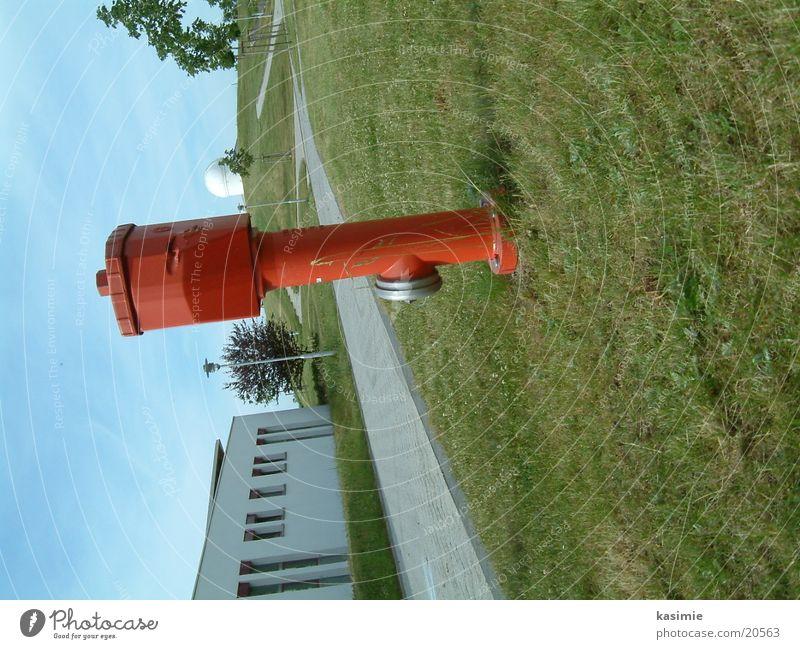 Wasserhydrant Wasser rot Wiese Freizeit & Hobby Hydrant