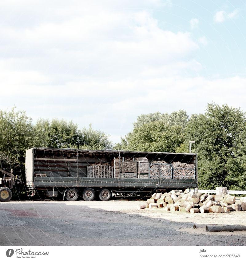 der nächste winter kommt bestimmt... Himmel Wolken Pflanze Baum Platz Lastwagen Anhänger Holz Brennholz Vorbereitung Farbfoto Außenaufnahme Menschenleer