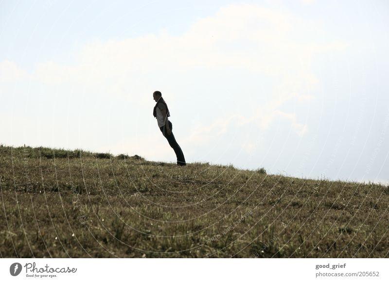 körperhaltung 1A Mensch maskulin Jugendliche Erwachsene 18-30 Jahre Umwelt Natur Landschaft Pflanze Sommer Herbst Wind Gras Park Wiese Hügel Bekleidung Pullover