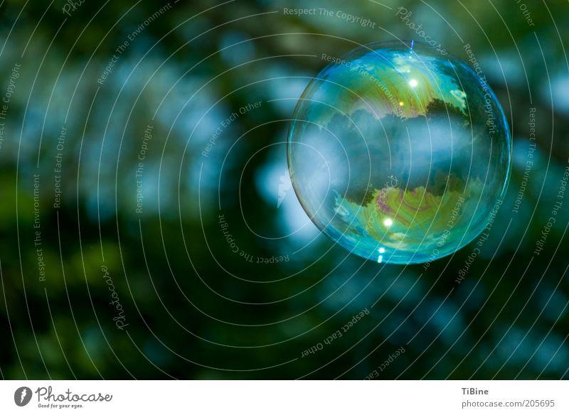 Die Welt in einer Seifenblase grün blau träumen Luft fliegen rund Kugel Luftblase Reflexion & Spiegelung Experiment Textfreiraum links regenbogenfarben