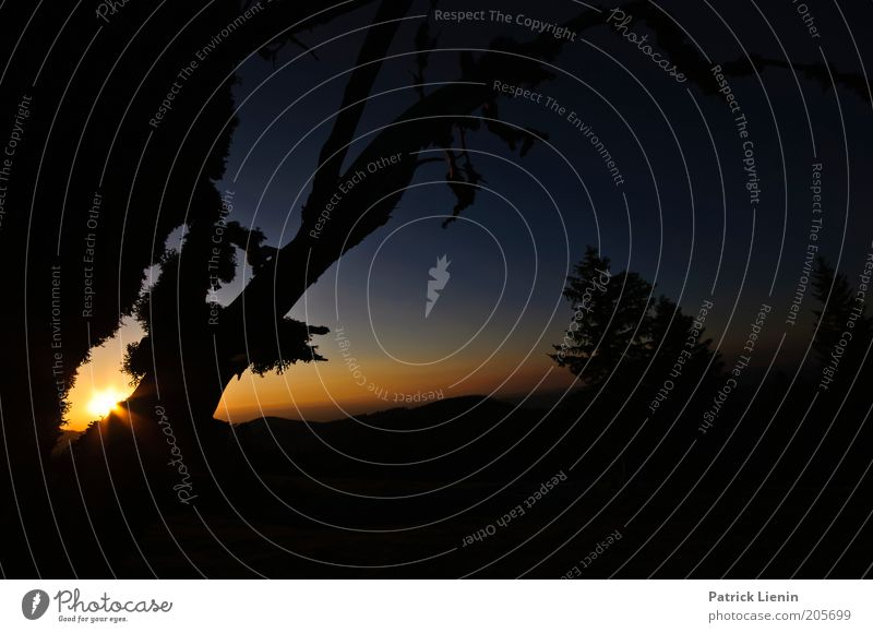 Land of fairy tales Natur Ferien & Urlaub & Reisen Baum Pflanze Sonne Erholung Umwelt Landschaft dunkel Berge u. Gebirge Luft träumen Horizont Klima Urelemente
