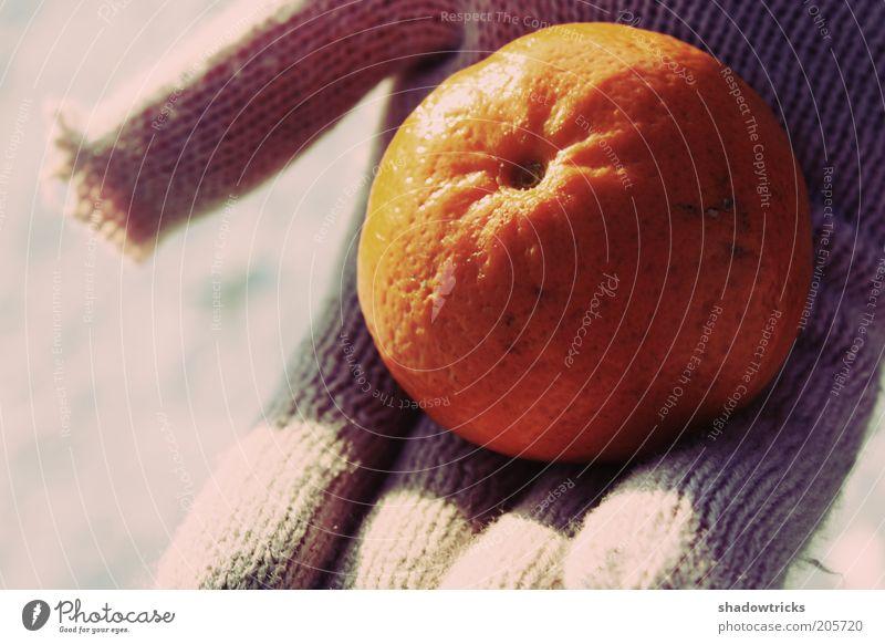Ohne Titel Orange orange Gesundheit Lebensmittel Frucht stoppen genießen beige Handschuhe Vegetarische Ernährung Mandarine
