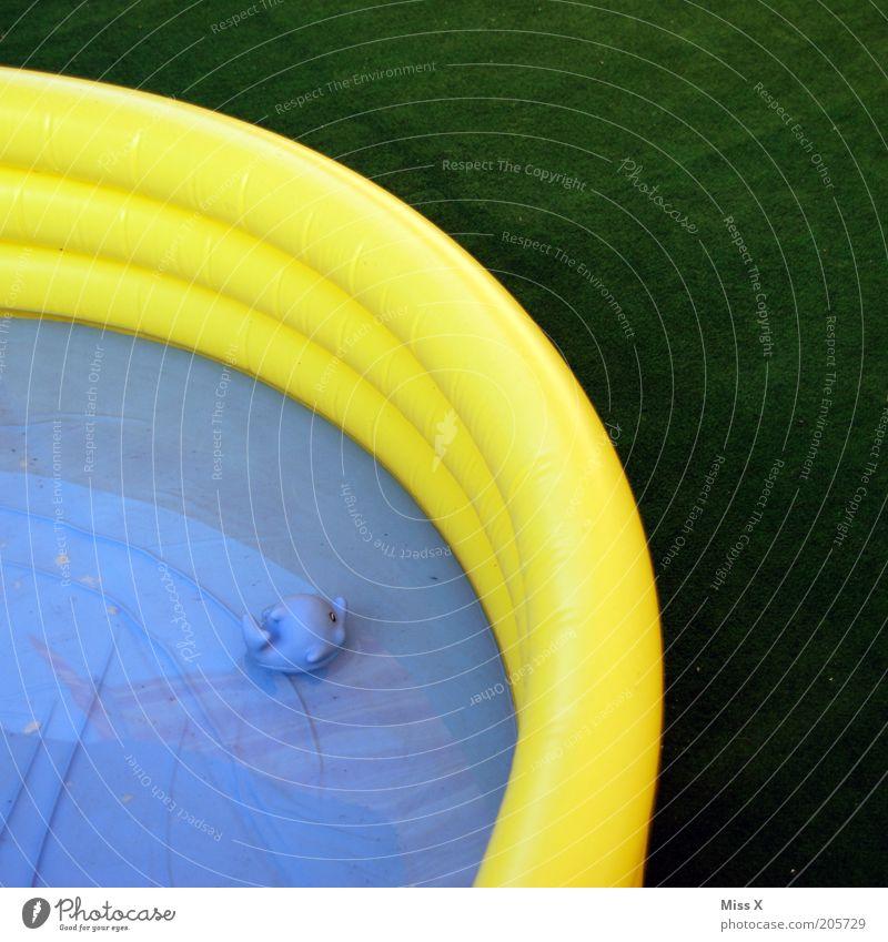 eine Runde angeln? Wasser blau Sommer gelb klein nass frisch Fisch Schwimmbad Freizeit & Hobby Kindheit Kunststoff Gummi Sommerurlaub Spielzeug