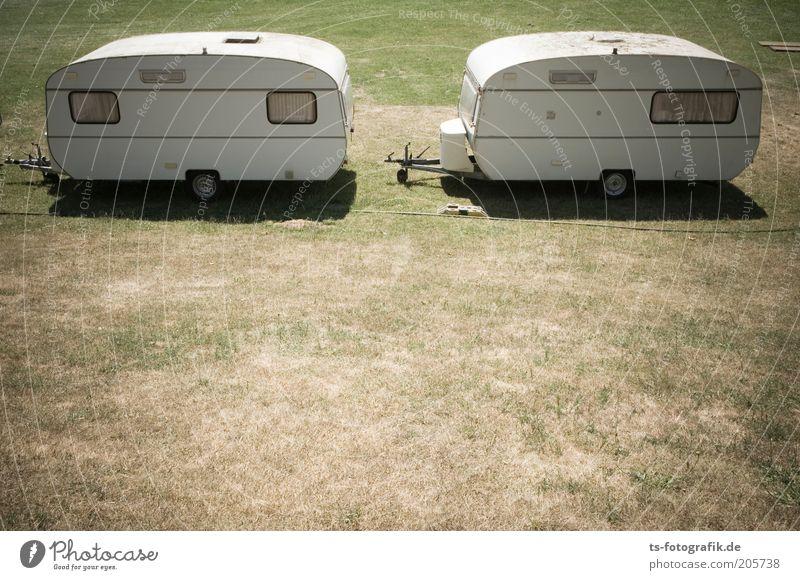 Wohnwagen-Balz weiß grün Sommer Ferien & Urlaub & Reisen Einsamkeit Ferne Wiese Gras Wärme braun 2 Zusammensein Ausflug paarweise trist Tourismus